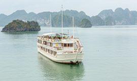 Calypso Cruise - Overview